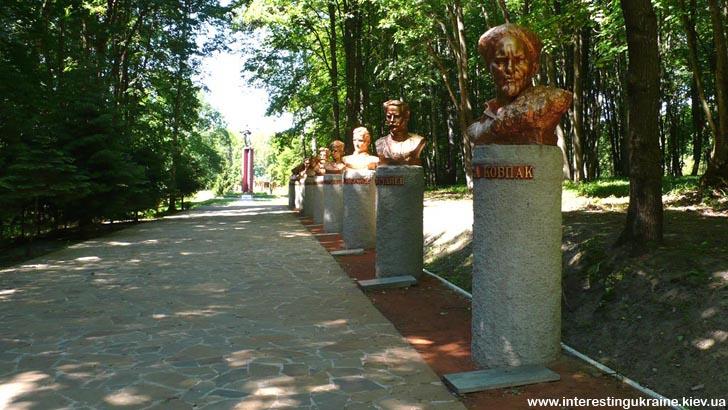 Спадщанський ліс. Дорога до Музею партизанської слави
