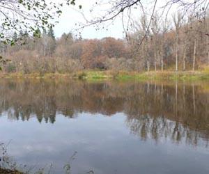 Городницький парк - пам'ятка Городниці Житомирської області