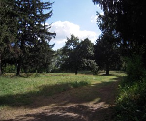 Пам'ятки Кагарлика. Парк